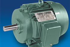 GL_Grasa para Rodamientos de Motores Eléctricos
