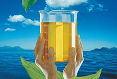 AL_Aceites Biodegradables de Origen Vegetal para el Medio Ambiente
